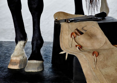 Hoof on Mat